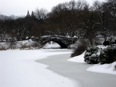 A shot of the bridge with the snow and ice covered pond.  Breathtaking and peaceful!