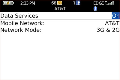 Force EDGE Network on ATT Over 3G for Blackberry: Here is the data services screen.  Scroll down to the 3G & 2G Setting.