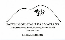 Patch Mountain Dalmatians