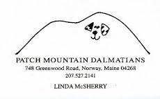 Patch Mountain Dalmatians