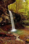 Waterfall --Baptist (southern) News and updates