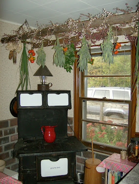 Herbs drying in the kitchen