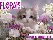 Evey Florais