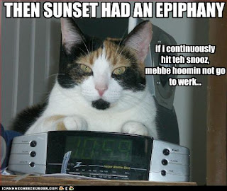 Cat Epiphany