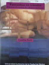 Libro sobre video feminista en México
