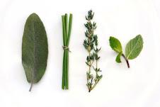 Propiedades plantas y aceites
