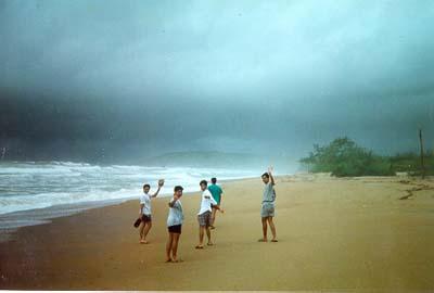 tollyupdate goa beaches