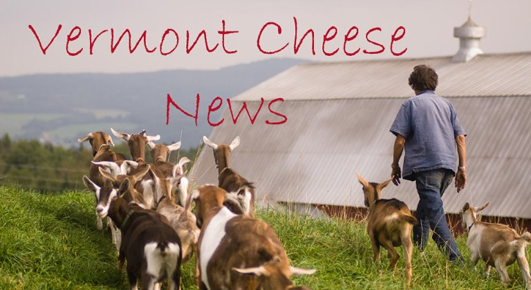 Vermont Cheese News
