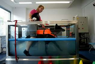 El arca de pitusa rehabilitaci n canina con hidroterapia for Piscinas para perros baratas