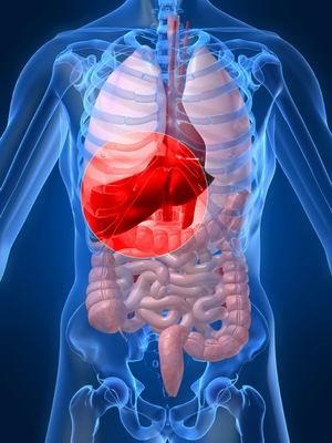 Penularan Hepatitis B Sangat Berbahaya pada Bayi