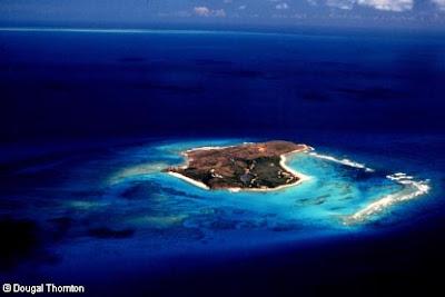 Virgin Island Save File Hentai