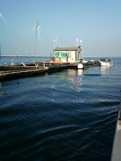 Bait Barge