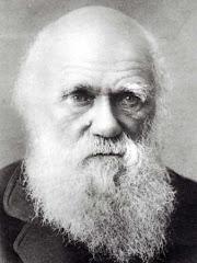 Año Darwin