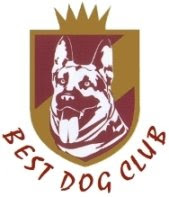 BEST DOG CLUB