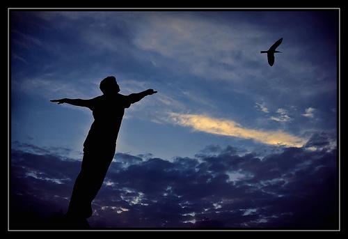 [I+belive+i+can+fly.htm]