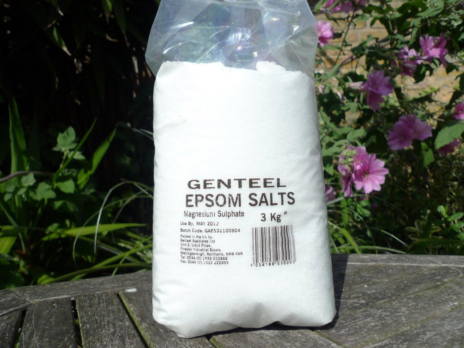 epsom salt for gardening. I Recently Lugged Home This 3kg Bag Of Epsom Salts From The Garden Pharmacy In Covent (where It Costs £6 For Huge Bag). Salt Gardening