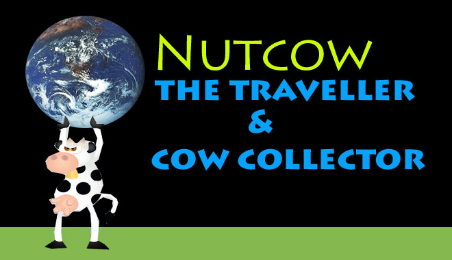 Nutcow the traveller