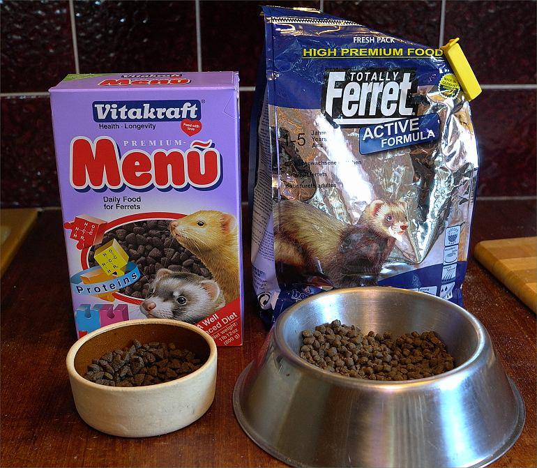 Urbans Blog What Do Ferrets Eat