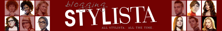 Blogging Stylista~