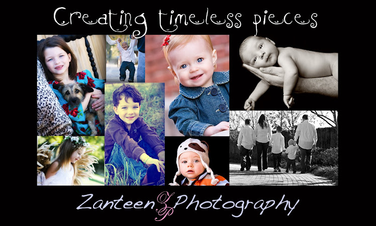 zanteen photography