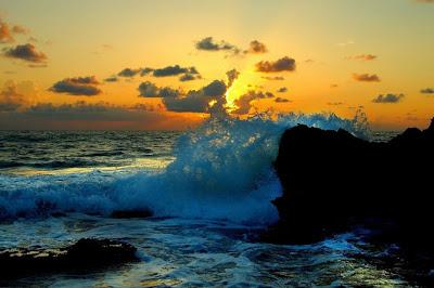 El Poder del Oceano