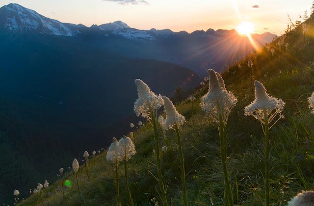 20 Imagenes de la Naturaleza (Sorprendente y Hermona)