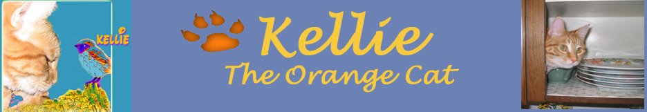 Kellie The Orange Cat