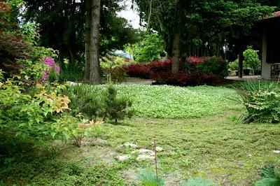 Renato photoblog angoli di giardino - Angoli di giardino ...