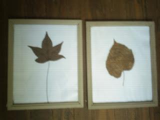 cuadros con hojas secas