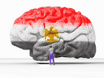 غسيل مخ..........دماغ مصريه