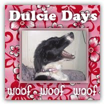 Teri's Doggy Dulcie invites you to visit her blog!
