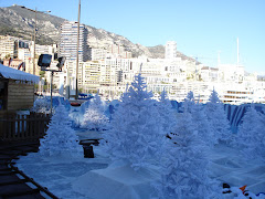 Snowy Xmas Trees and Million Dollar Yachts...