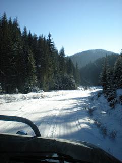 Dok se vozite seoskim putem, kroz planinu gdje je nadmorska visina oko