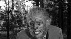 The Werewolf - 1956