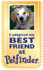Adopt Your Next BFF