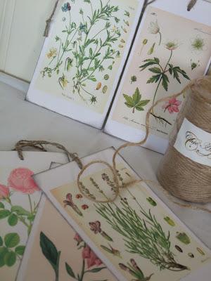 Botaniske kort