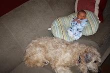 Seth newborn