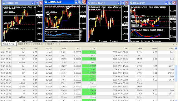 ROBOTFOREX ACTION ON 5 DECIMAL ALPARI  UK PLATFORM