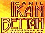 CANIL IKAN BETTAH