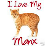 The Manx Cat
