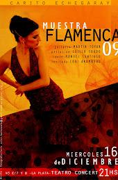 Muestra anual Flamenco 09