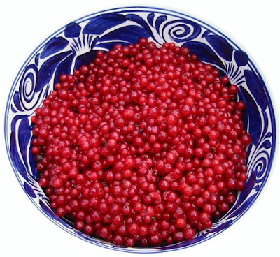currants+in+large+blue+bowl Red Currant Jelly