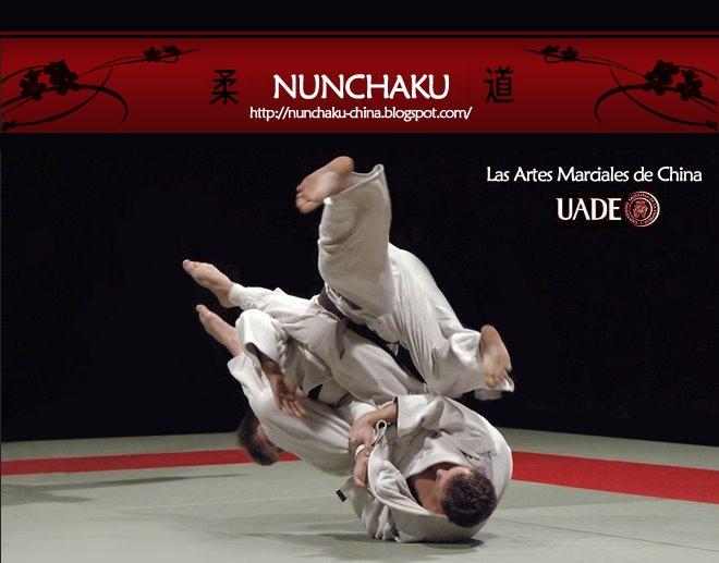 Nunchaku - Artes Marciales Chinas