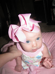 Zoey Elizabeth and the Big Pink Bow