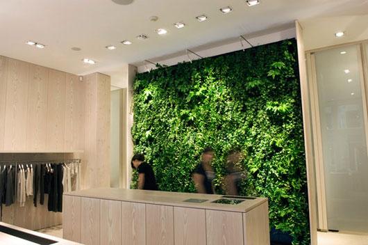 Janice Tjioe Indoor Vertical Garden