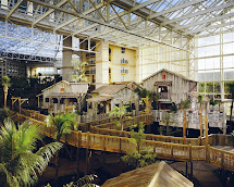 Hotel Gaylord Palms