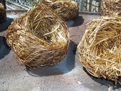Robin's egg bird nest - Spring brunch decor