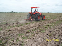 Ploughing the ground before planting