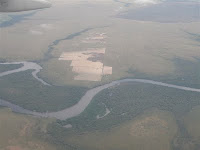 Aerial view of Amazonia Reforestation planting area 2009