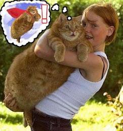 supercat...is super!